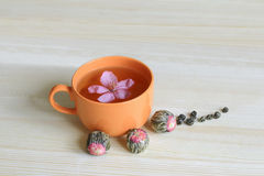 Orange Cup of tea with flower and bulbs welding Royalty Free Stock Photography