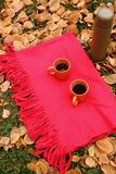 Orange cups with black tea and thermos bottle on red carpet and green grass and fallen leaves. Autumn camping place. Outdoor recreation Royalty Free Stock Photo
