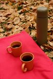 Orange cups with black tea and thermos bottle on red carpet and green grass and fallen leaves. Autumn camping place. Outdoor recreation Royalty Free Stock Photos