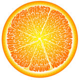 Orange in a cut close up Royalty Free Stock Photo