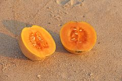 Orange cut melon with seeds inside. Two halves of a beautiful me. Lon lie on the sand. Tropical Asian fruits. Healthy food, natural fruits. View from above royalty free stock image