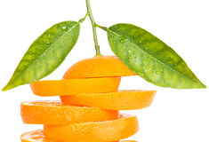 Orange cut into slices  with leaves and drops Stock Photography