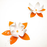 Orange cutout paper  flower Royalty Free Stock Image