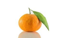 Orange d'or Photo stock