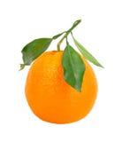 Orange d'isolement sur le blanc Images libres de droits