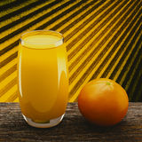Orange. 3d orange juice on the table Royalty Free Stock Photos