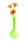 Orange daisy flowers in green vase Royalty Free Stock Image