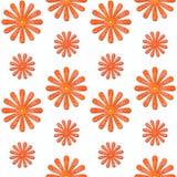 Orange daisy seamless background. Seamless background graphic with orange daisies on white background Stock Image