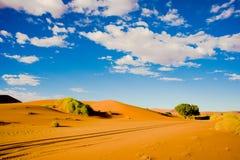 Car tracks in orange sand of desert in Namibia. Dunes in Sossusvlei, Namibia stock image