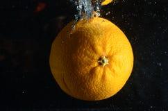 Orange dans l'eau image stock