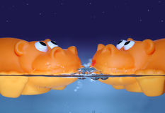 Orange date. Couple of orange toy hippos on a valentine's date swimming and watching the stars stock image