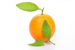 orange de fruit Images libres de droits