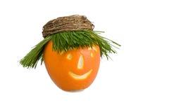 orange de poupée Photos stock