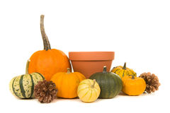 Orange decoration pumpkins and a empty flowerpot Royalty Free Stock Photos