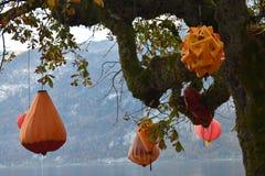 Orange decoration on the tree in Hallstatt, Austria. royalty free stock photos