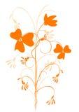 Orange decorative flower. Isolated on white background Royalty Free Stock Image