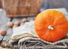 Orange decorative pumpkin Royalty Free Stock Photo