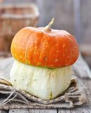 Orange decorative pumpkin Stock Images
