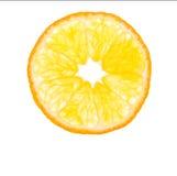 Orange del Arkivbilder