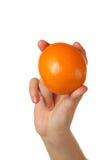 Orange in der Hand Stockfotos