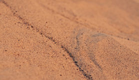 Orange desert sand background texture Stock Images