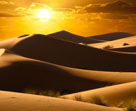 Orange desert sunrise Royalty Free Stock Photography