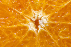 Orange Detail background Stock Image