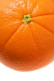 Orange detail isolated white Royalty Free Stock Photography
