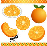 Orange Digital Clipart Royalty Free Stock Photos