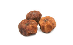 Orange dry and rotted Stock Image