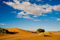 Desert und dunes in Namibia. Dunes in Namib Desert, Namibia stock images