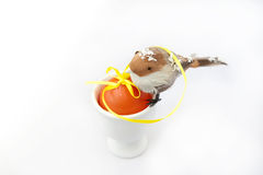 Orange Easter Egg. Painted orange Easter Egg in a egg-cup Stock Photos