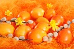 Orange easter eggs Royalty Free Stock Photos