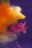 Orange eating magenta clouds stock image