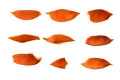Orange Eifer Lizenzfreies Stockfoto