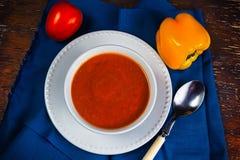 Orange Eignungssuppe Stockfoto