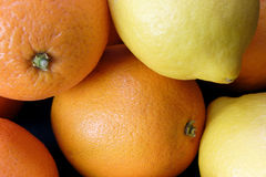 Orange et citrons Image stock