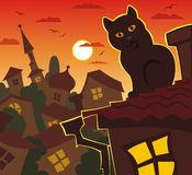 Orange evening, cat, roof Stock Photography