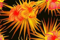 Free Orange Exotic Pattern. Stock Image - 162408341