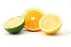 orange för citronfruktcitron Arkivbilder