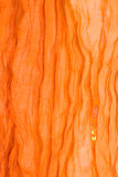 Orange fabric background Royalty Free Stock Image