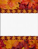 Orange Fall Frame for your message or invitation. With copy-space in the middle Royalty Free Stock Image