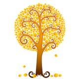 Orange fall tree Stock Image