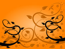Orange Fan Floral Background Stock Images