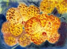 Orange Farbe der abstrakten Malerei des Aquarells ursprünglichen der Orchidee blüht stockfoto