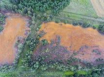 Orange Farbe des alten Behälters der Schwefelsäure natürlichen im Süden von Polen Lizenzfreie Stockfotos
