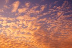 Orange feather clouds in the sunset purple sky. Background Stock Photos