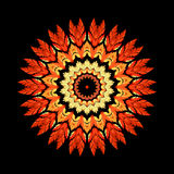 Orange Feather Kaleidoscope Mandala Royalty Free Stock Photography