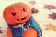 Orange festive mood. Smiling pumpkin in a warm scarf on the background of autumn leaves Stock Photo