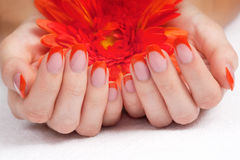 Orange fingernails and bright flower Royalty Free Stock Images